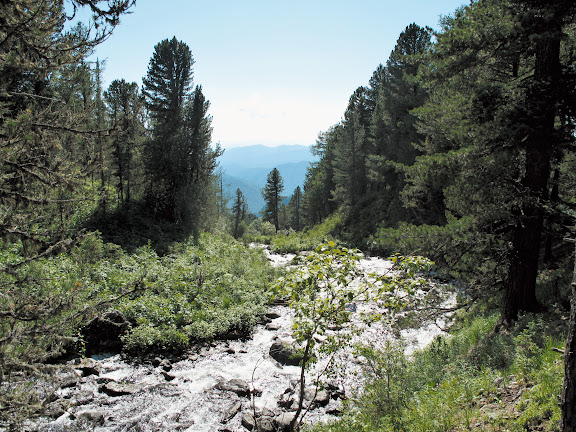 Dans la descente depuis les lacs : biotope (1000 m) de Parnassius stubbendorffii. 5 juillet 2010. Photo : J. Marquet