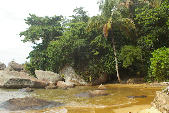 Ilha Grande (RJ), 18 février 2011. Photo : J.-M. Gayman