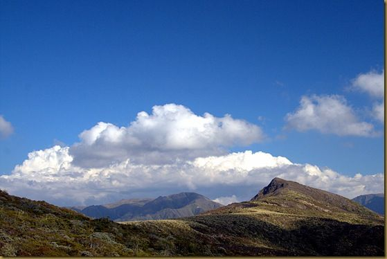 Kaiwamana Ranges Walk
