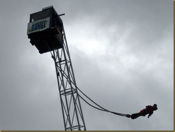 Agrodome bungy