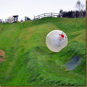 Zorb rolling down hill