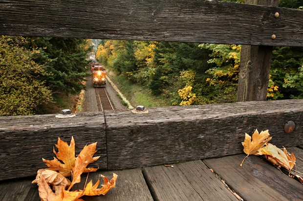 Westbound BNSF mixed freight train framed by the wooden overpass at Home Valley, Washington, USA