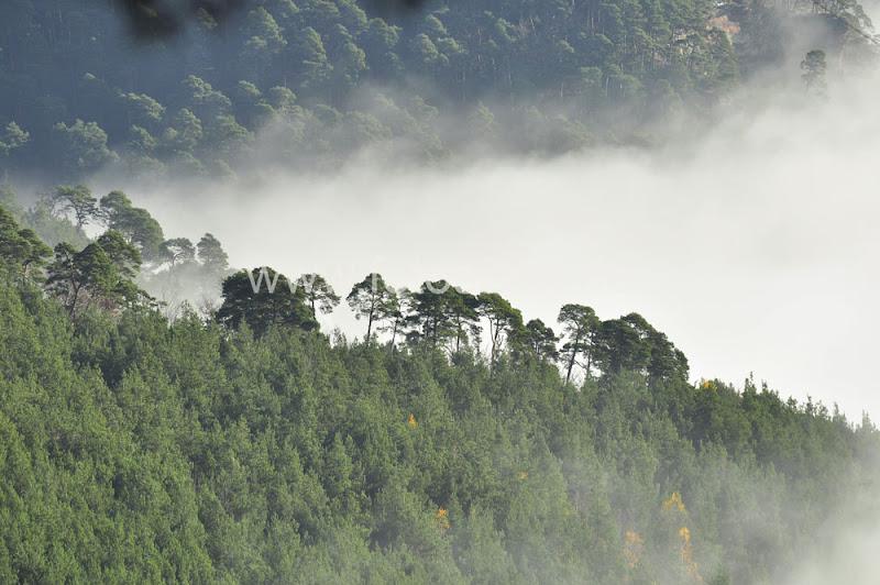 morgens landschaft berge