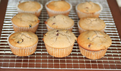 photo of muffins on a baking rack