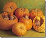 anne_geddes_babies_in_pumpkins