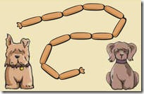 dogs_sausages_Yr2_Ex3_medium