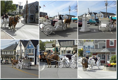 carriage ride collage