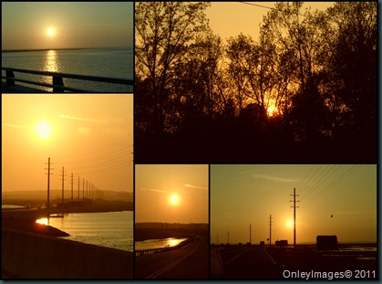sunset collage042311