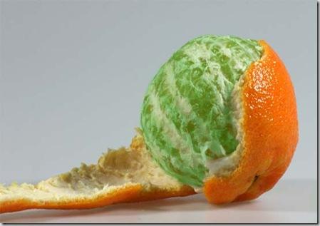 http://lh5.ggpht.com/_AWl8eI0KPoY/Sb-kUQAwAnI/AAAAAAAAVFo/JWbA7PPuJRU/lab_image_green_orange_thumb%5B3%5D.jpg