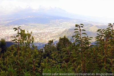090 Cruz Carmen-Tegueste(La Laguna)