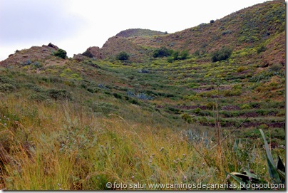 2631 Valsequillo-San Roque