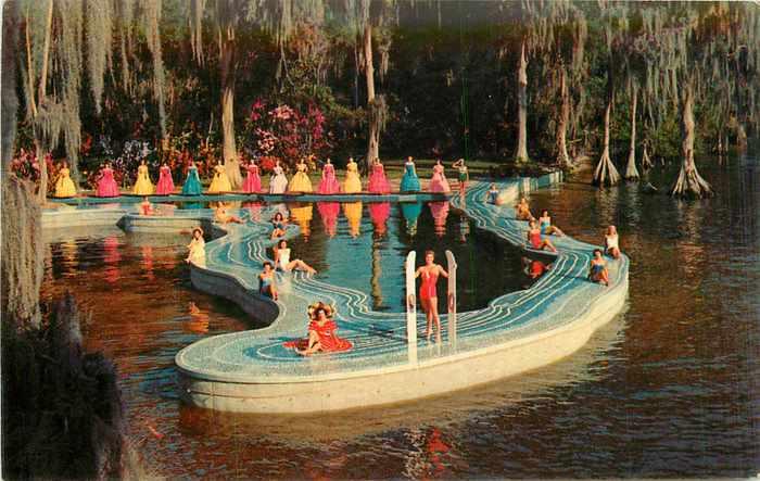 Vintage Postcard Blog Cypress Gardens Mgm Set Esther