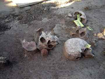 Gruesome finds -- most of the skulls were found together grouped in so-called nests. The other bones were jumbled together in no apparent order.