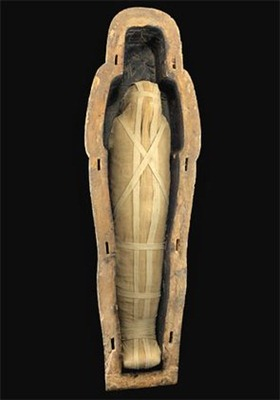 The curse of the vanishing mummies