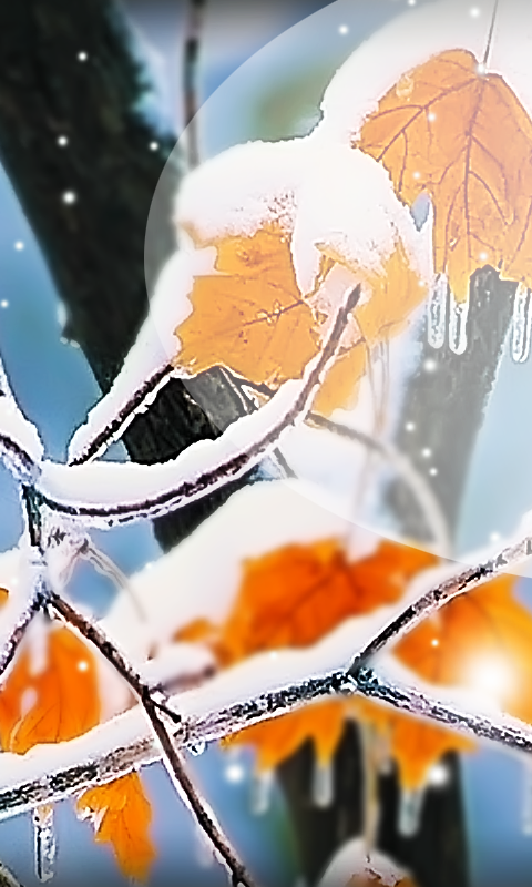 Winter Day HD Live Wallpaper - screenshot
