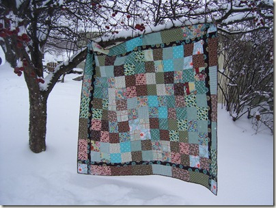 quilts, chickens, winter 014