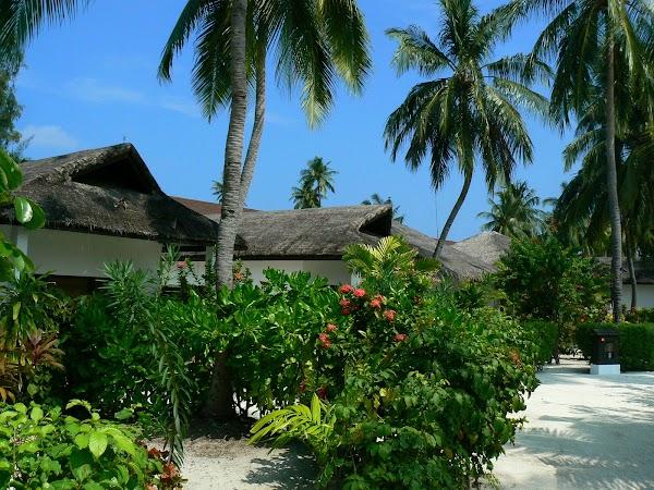 Imagini Maldive: Velassaru cazare.JPG