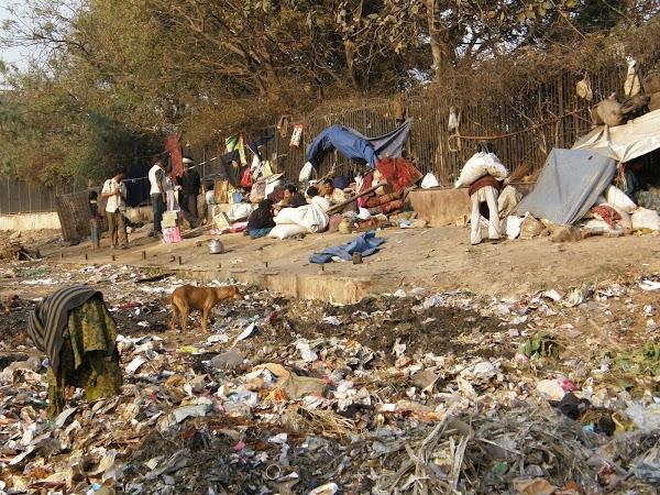 Imagini India: prin Old Delhi