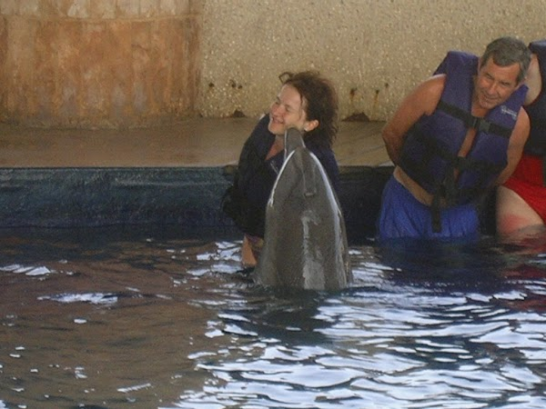 Obiective turistice Mexic: pupata de un delfin in Cancun.jpg