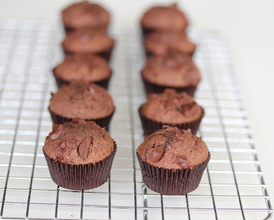 photo of nutella cupcakes lined up on a baking rack