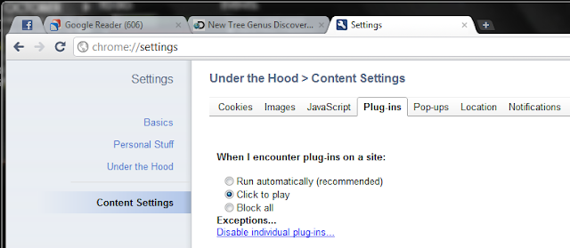 Google Chrome Settings click to play plug ins