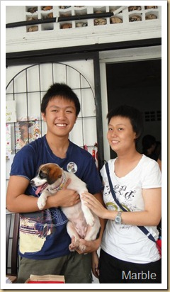 marble and adopter 2