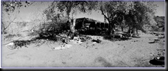 Ballarat-CharlesManson-TheMansonFamily(7)