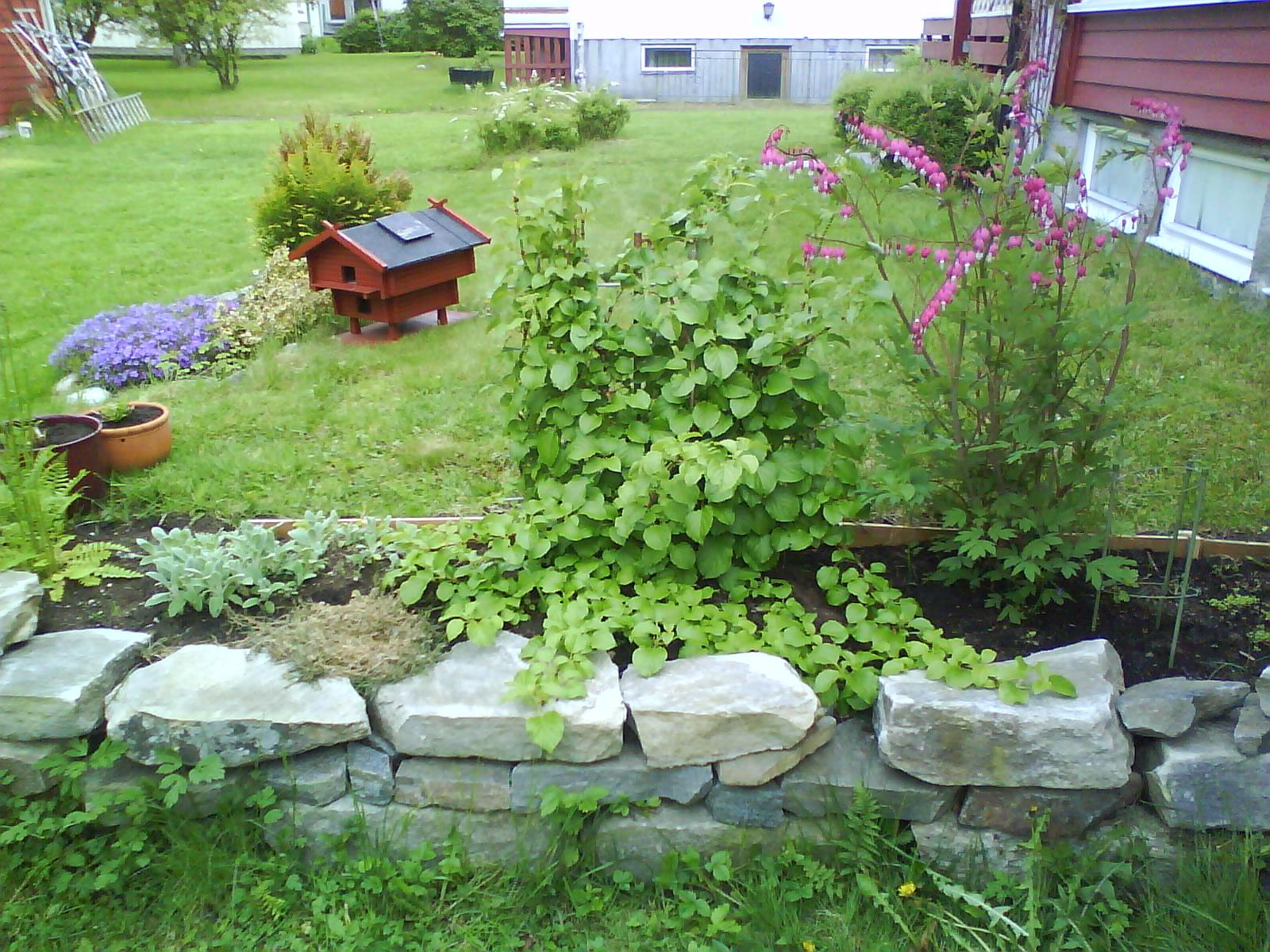 steinmur i hagen