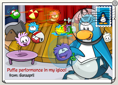 Puffle Performance Postcard :)