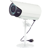Viewer for StarDot IP cameras