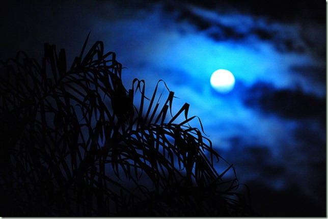 bluemoon3