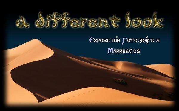 Frases De Danza Cortas 3 Quotes Links