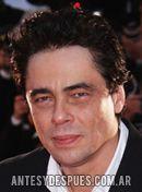 Benicio Del Toro,