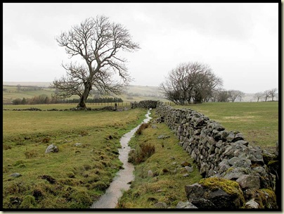 Gill Beck, for Caldbeck