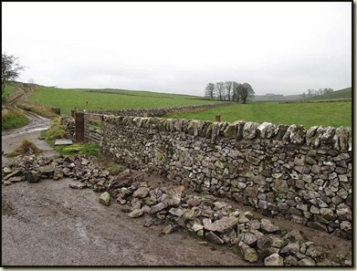 A newly renovated dry stone wall