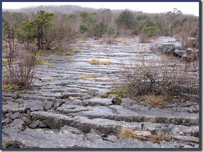 Gait Barrows - a limestone pavement