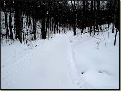 Trail 36 - a luge section