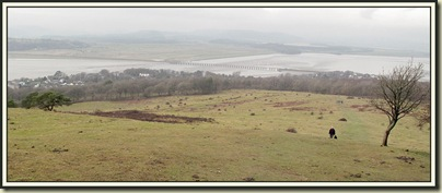 The view from Arnside Knott - 11/2/11