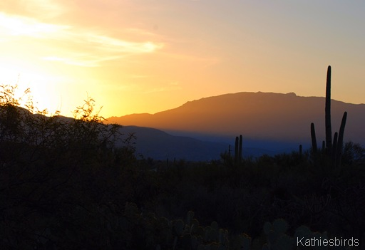 1. Sunrise in Sabino3-6-07-kab