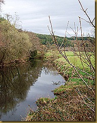 River Taw from Eggesford Bridge