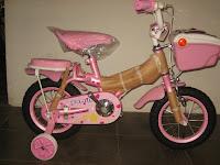 1 Sepeda Anak FAMILY CG Lampu