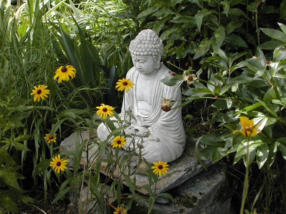 Garden Design Principles Windowsunity