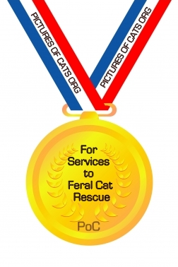 Feral Cat Rescue Award