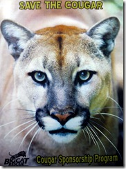 big cat rescue sponsorship program 1