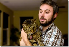 cat with feline anemia