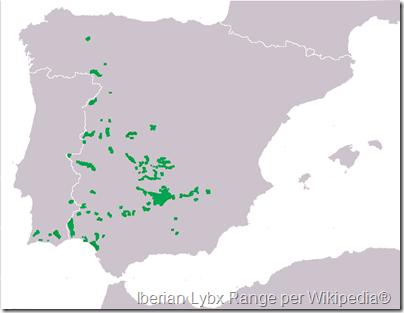 Iberian lynx range