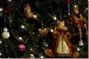 cat christmas wallpaper 11