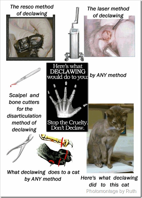 declawing by any method is cruel