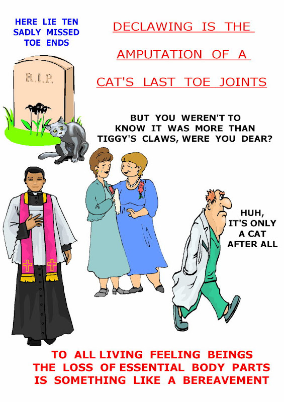 declawing cats creates a bereavement for the cat