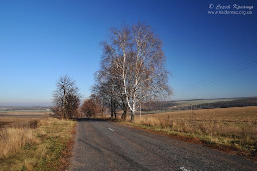 дорога до Лебедівки
